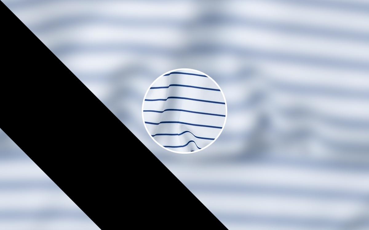 Estampado Navy Stripes - NK